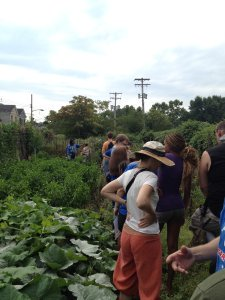 Participants check out the first of two community gardens in Hazelwood.